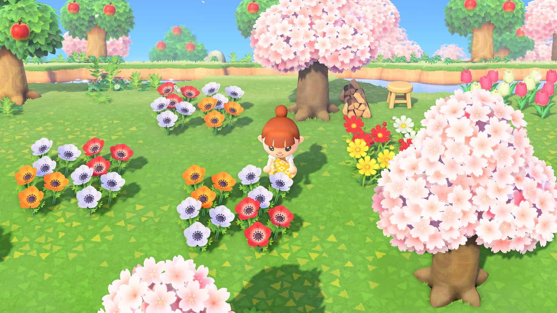 Blumen werten die Insel auf